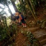 Trilha no Parque Nacional Serra dos Órgãos, em Teresópolis, RJ