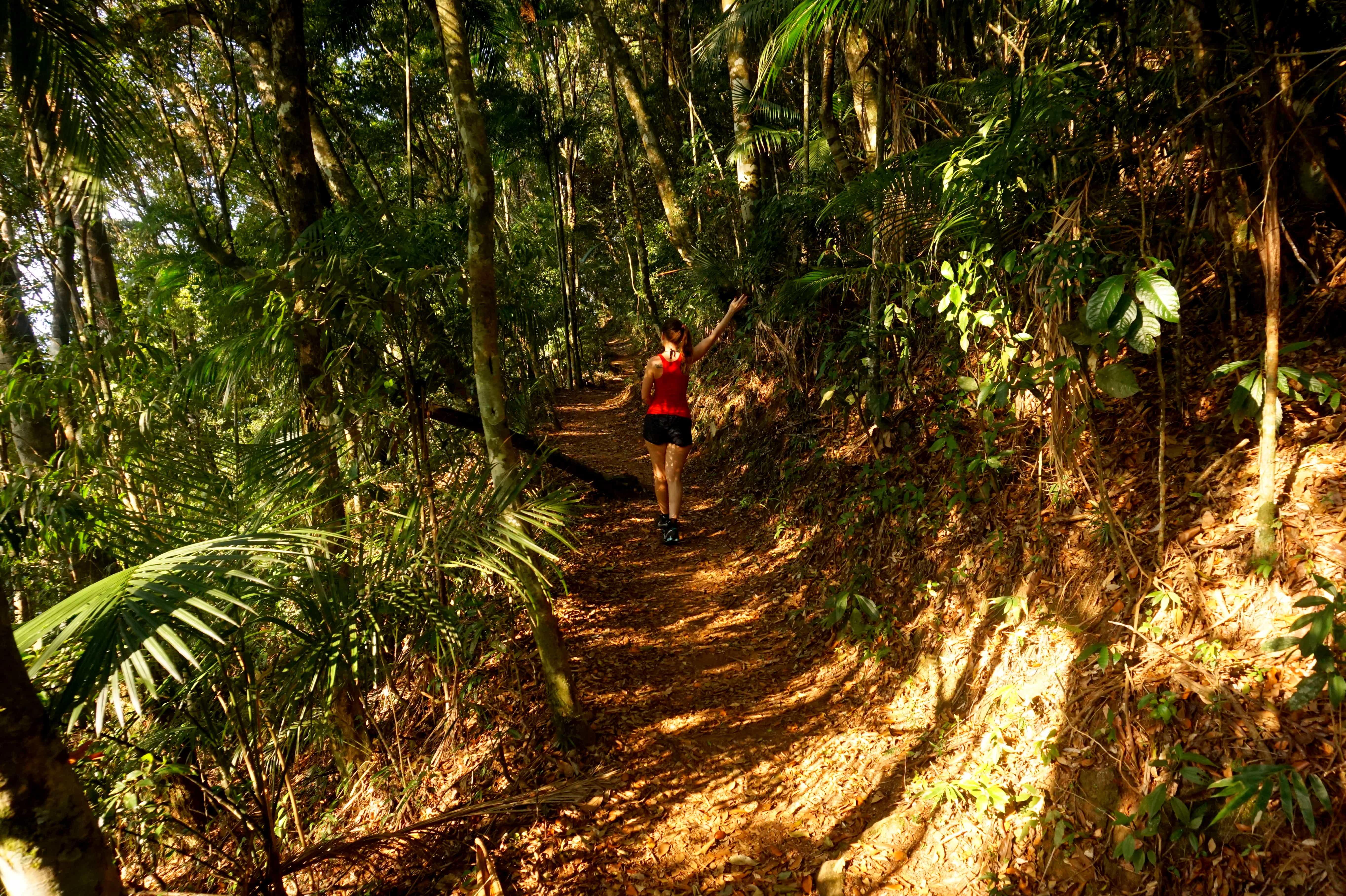 Parque Nacional Serra dos Órgãos